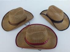Hasır kovboy şapka ad 3,50_600x450