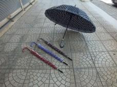 6001 16 telli bastonlu bayan şemsiye koli(60lı) ad 17,50_600x450