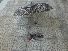 Welling sa5518 8 telli bayan şemsiye 25,00_600x450